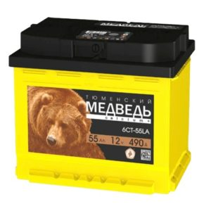 Тюменский Медведь 55 АЧ ПП